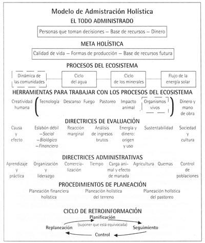 administracion holistica